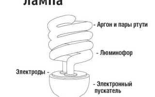 Что будет если разбить энергосберегающую лампочку